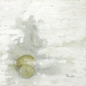 Zitronen - citrons - citrus